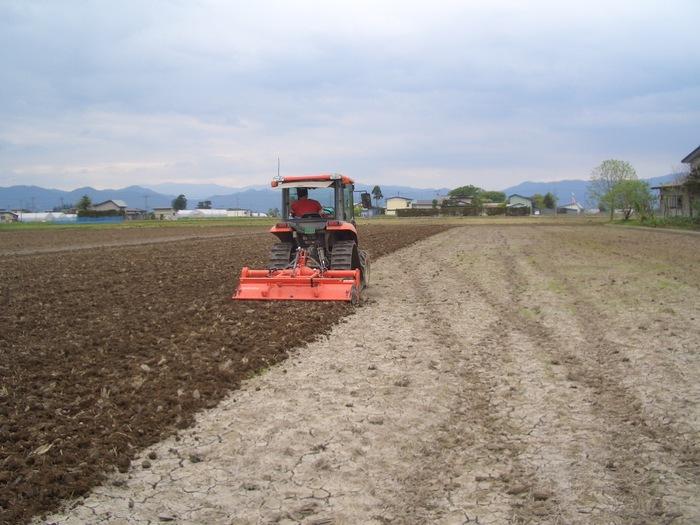 農作業1.jpg