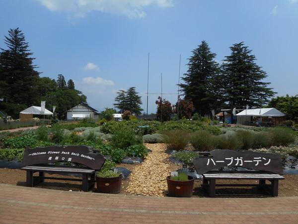 置賜公園.JPG